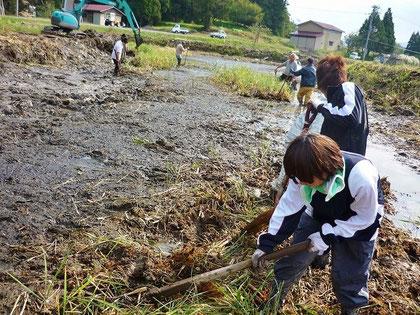 レンコン畑にするために泥上げ作業を行いました!想像以上に大変でした…