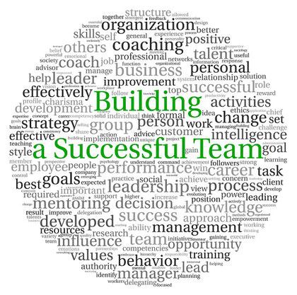 team coaching succesvol team groep collega's teamleden gedrag leiderschap