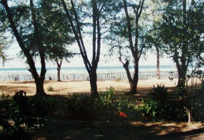 Blick von unserem Strandbungalow