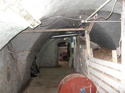 Сохранившиеся подвалы 2011 г.