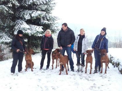 Chantal mit Dayo, Meret mit Django, Andy mit Rayha, Nicole mit Zina und Nadine mit Bhanu