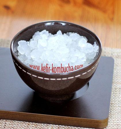 Fresh water kefir grains