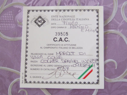 C.A.C. Nazionale Reggio Emilia