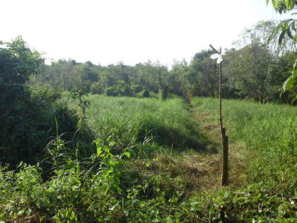 Land for sale near Khao Lak, Thailand.(5')