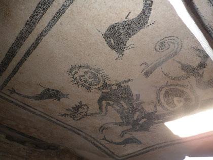 Mosaico en unas termas de Herculano
