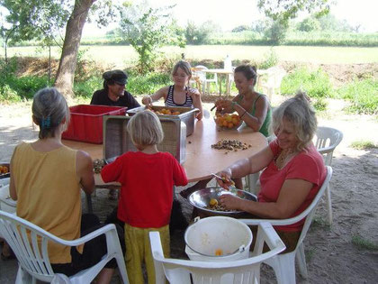 préparation des abricots pour la confiture