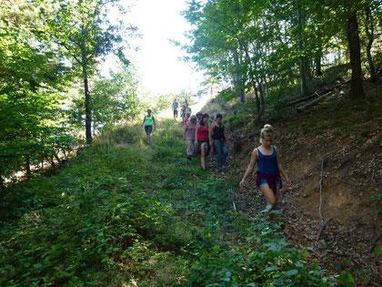 Treynas : balade dans la forêt de la Grangette