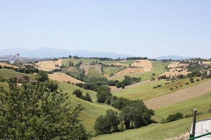 工房の外に広がる景色。丘の向こうには2000メートル級のシビリーニ山系が広がり、秋から春まで雪の頂が見えます。