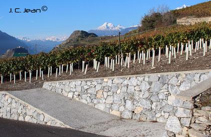 Mur en pierres sèches, Rte de Molignon