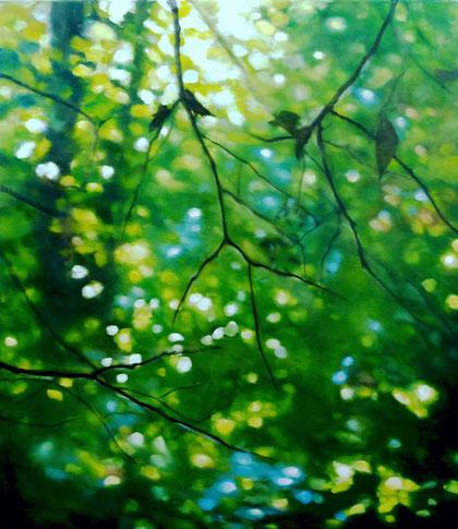 Landscape 70x80cm