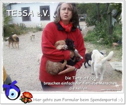 Tierschutz Türkei, Nilgün Karsilayan, TESSA e.V.