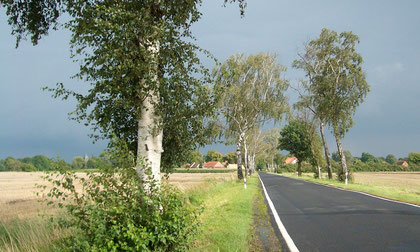 Märkische Landschaft