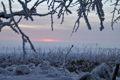 Abenddämmerung in der verschneiten Wesermarsch