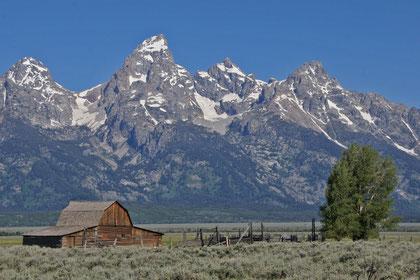 eine alte Mormonenhütte vor dem 4197 Meter hohen Grand Teton
