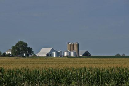 Landwirtschaft prägt das Bild dieser 5 Staaten (hier Iowa)