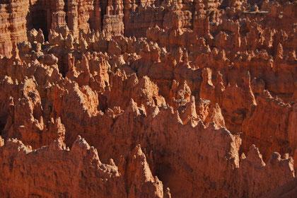 Bryce Canyon - ... und dann steht man einfach nur sprachlos an der Geländekante und schaut runter ...