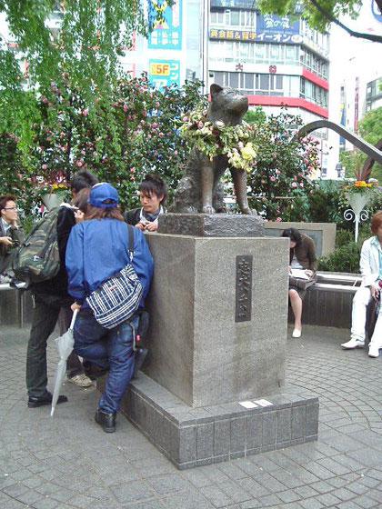 Hachikō - 2005©Marj'