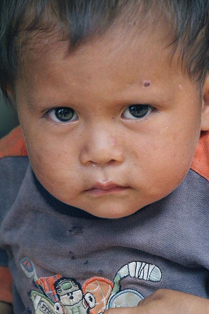 2001 lebten etwa 6250 La Poncha Indianer im Amazonasgebiet