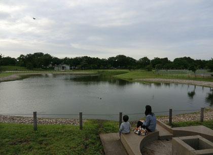 ▲池を眺めたたずむ親子。鴨が池から飛び立った