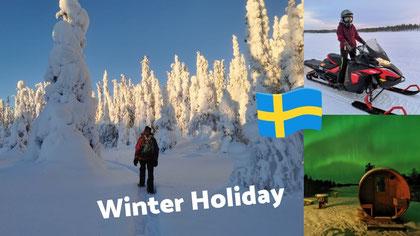Winterurlaub in Lappland  Winter Schnee Lappland Urlaub Schweden