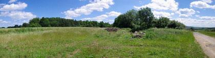 Waldstück in dem sich das Fort befindet Blick in Richtung St. Mihiel