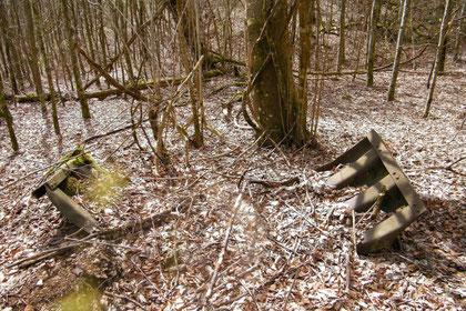 Wellblechelement in der Chaufourschlucht - Ravin du Chaufour