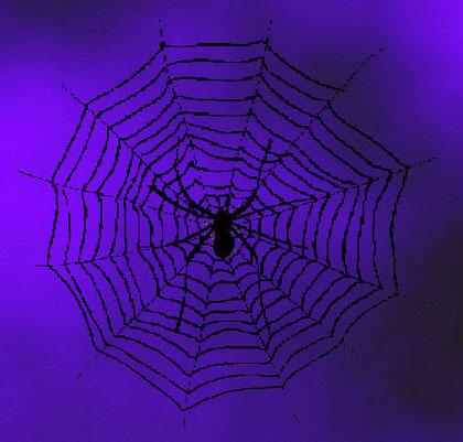 Toile d'araignée