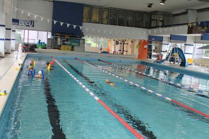 Natation for Palmes natation piscine