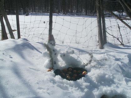 Osterhase und Schneeman treffen sich.