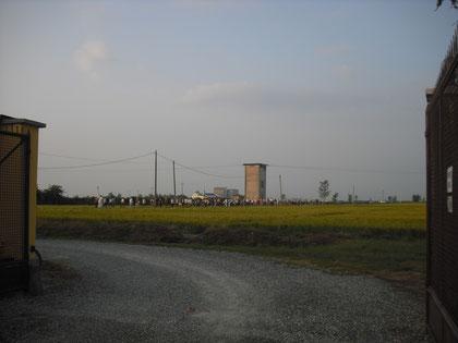 Immagine della processione del 2009