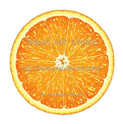オレンジ断面
