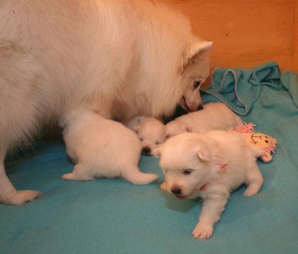 Aurora ist eine vorbildliche Mutter!