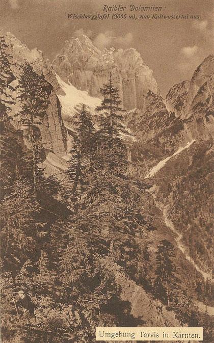 Wischberggipfel vom Kaltwassertal 1912