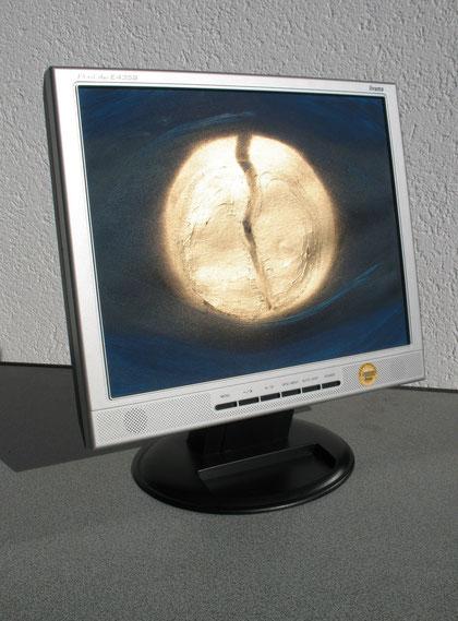 Die vielen Bilder und das eine Bild (Objekt, Computerbildschirm mit Bild)