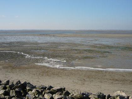 des galets sur la plage du Crotoy