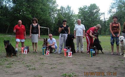 Бэст открытого класса,8 собак,2-е место-Вэлла фон Нордэн(Hallux von Batu-Шанта фон Нордэн)