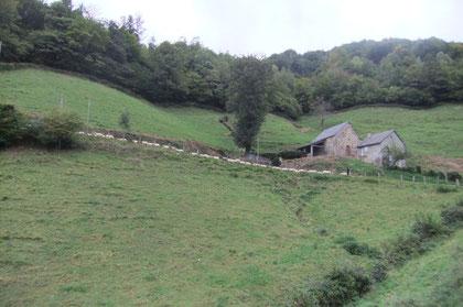 Un chapelet blanc s'égraine le long de la Route de Bouésou, sous la Borde Cazala.