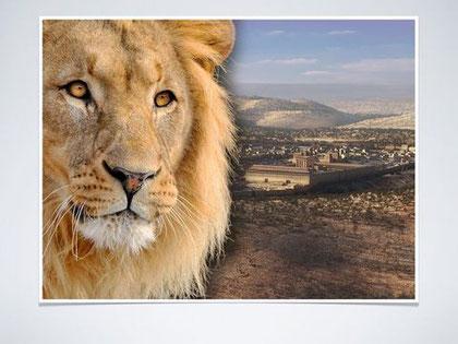 Jésus est le lion de la tribu de Juda.