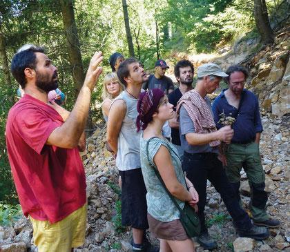 Die Kooperative Treynas führt regelmässig Kurse für Holz- und Forstberufe durch