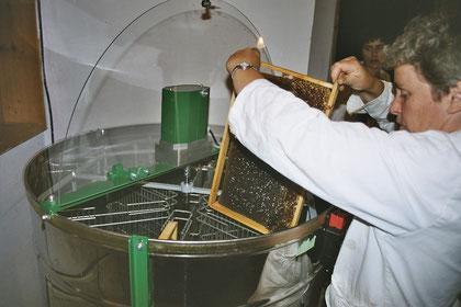 Beim Honigschleudern