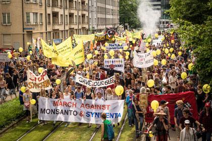 Multinationale Konzerne wollen weltweit das Saatgut kontollieren. Dagegen wehren sich immer mehr Menschen, wie hier alljährlich in Basel