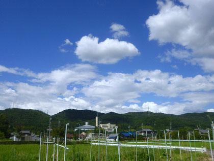 素晴らしい青空♪