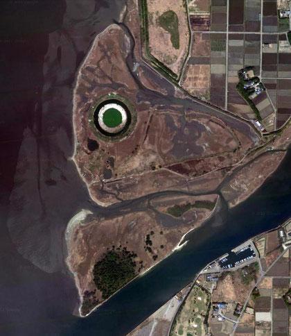 怪魚の顔!? いえいえ、訪れた干潟の航空写真です