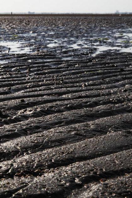 波紋が刻まれた平坦な砂浜が広々と広がる