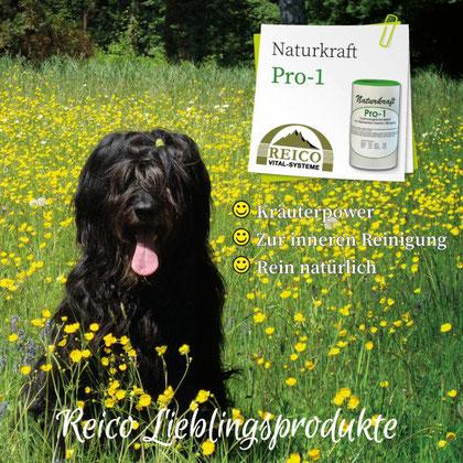 Naturkraft Pro-1 Ergänzungsfuttermittel zur allgemeinen inneren Reinigung