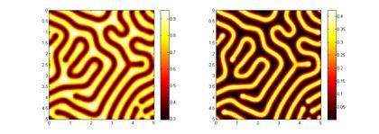 Exemple de solutions 'labyrinthe' du système de réaction-diffusion de Gray-Scott. Ce modèle explique en partie les motifs zébrés sur la peau de certains animaux. Méthode de différences finies d'ordre élevé en temps et en espace, mise en oeuvre en Matlab.