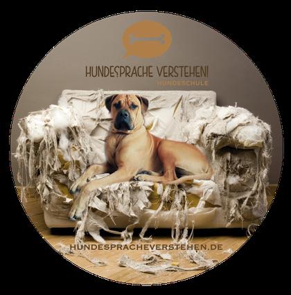 Pfotencampus Hundeschule Hundesprache verstehen Wissenswertes und Informationen
