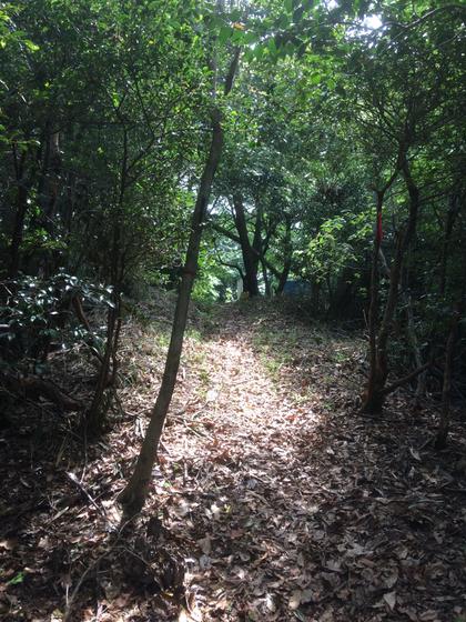 日下山直越の道(筆者撮影)