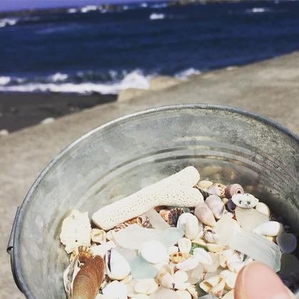 海辺で拾った貝やシーグラス