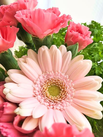 Yさんに戴いたお花☆